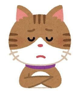 悩んだ猫の顔