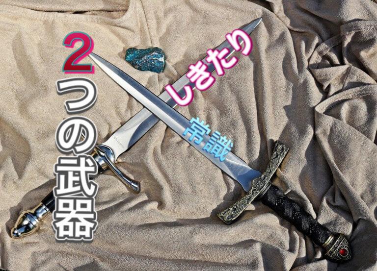 2つの武器