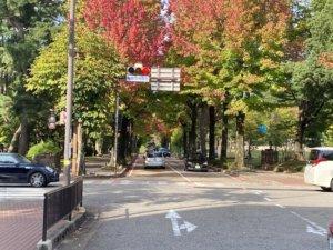 金沢市内迎賓館横の交差点