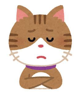 猫の困った顔