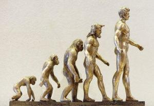 進化の過程・成長