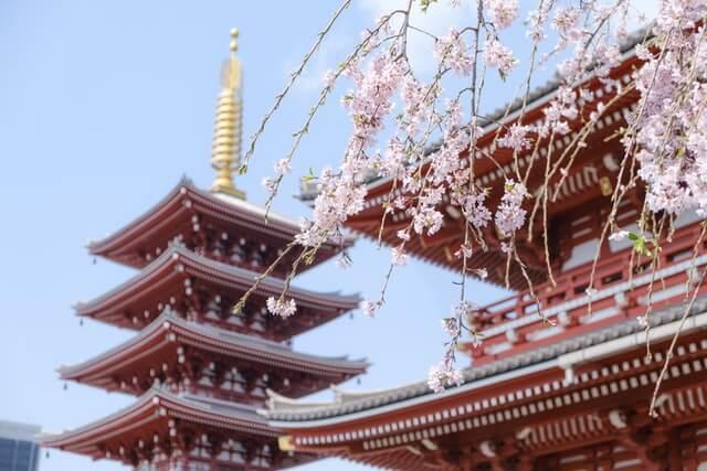 京都 法然寺
