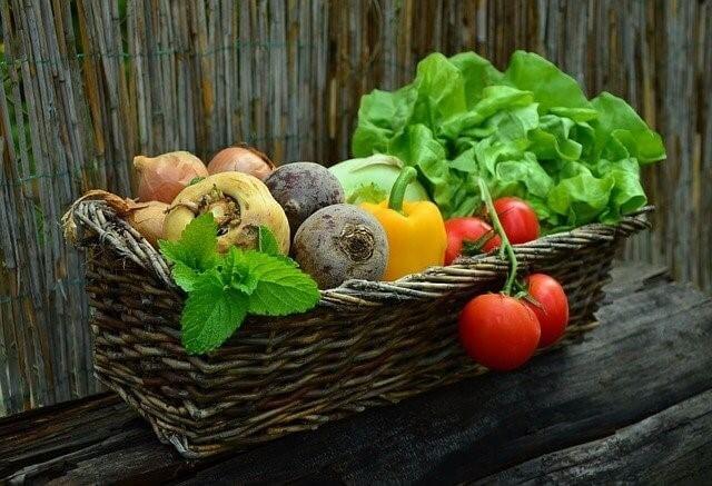 新鮮な野菜 食物繊維
